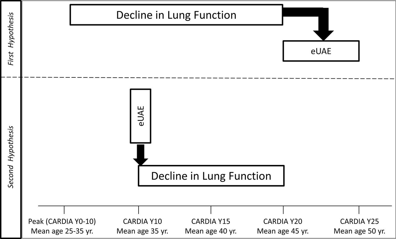 Rapid Decline In Lung Function In Healthy Adults Predicts Incident